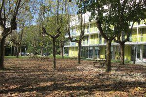 Green Nest Hostel Uba Aterpetexea